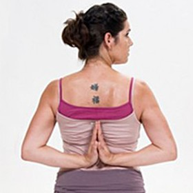 Aus- und Fortbildungen in der YogaKitchen mit Susann Napierala